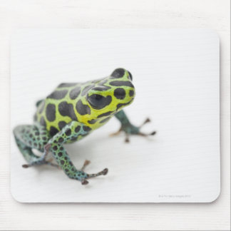 Black Spotted Green Poison Dart Frog (Ranitomeya Mouse Pad