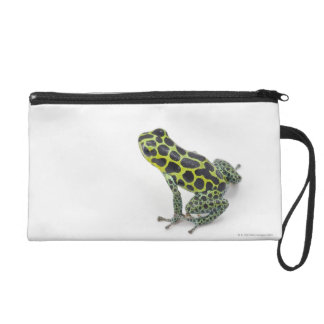 Black Spotted Green Poison Dart Frog Wristlet