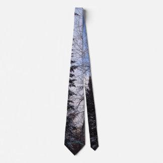 Black Spruce Camino St Croix Tie