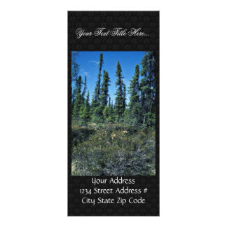 Black spruce forest and ledum rack card template