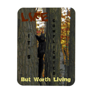 Black Squirrel Between Tree Trunks Life Magnet