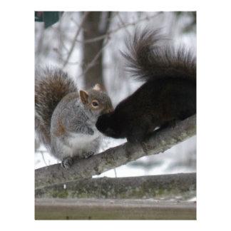 Black Squirrel Letterhead