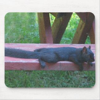 Black Squirrel Mouse Pad