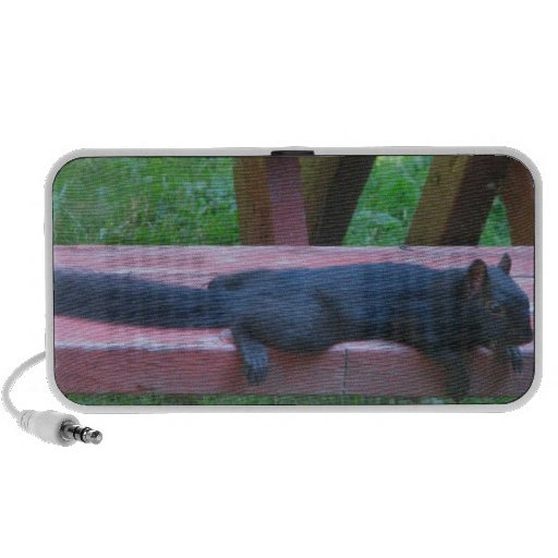 Black Squirrel Speaker