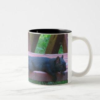 Black Squirrel Two-Tone Coffee Mug