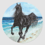 Black Stallion Arabian horse sticker