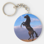 Black Stallion Basic Round Button Keychain