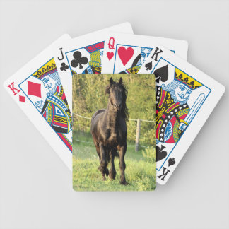 Black Stallion Bicycle Poker Cards