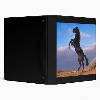 Black Stallion 3 Ring Binders