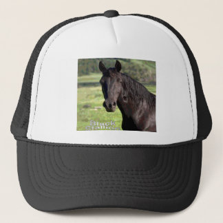 Black-Stallion cap