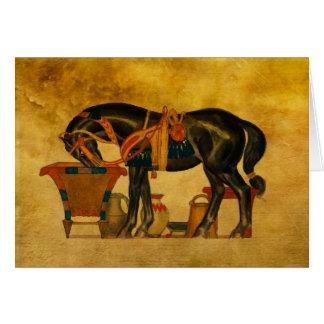 Black Stallion Card