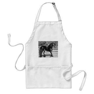 Black stallion horse adult apron