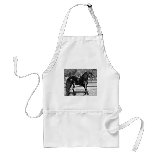 Black stallion horse adult apron