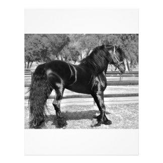 Black stallion horse letterhead template