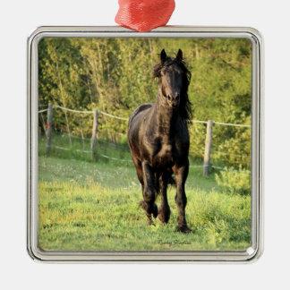 Black Stallion Metal Ornament