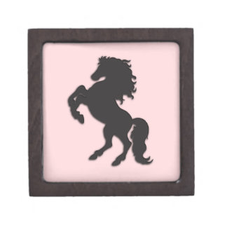 Black Stallion on Pink Gift Box