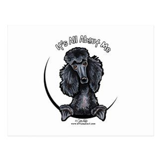 Black Standard Poodle IAAM Postcard