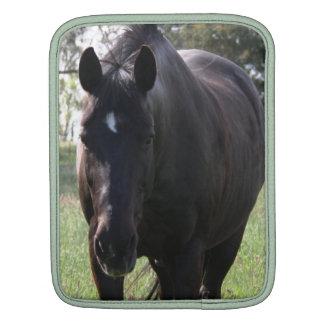 Black Stock Horse IPad Cover iPad Sleeves