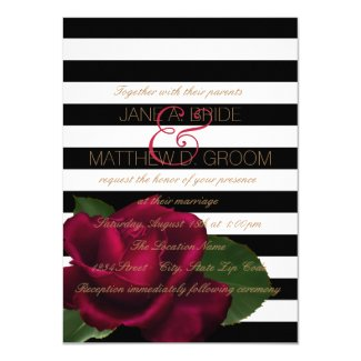 Black Stripe Rose Red and Black Wedding