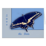 Black Swallow Longtail Greeting Card