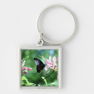 Black Swallowtail (2) Keychain
