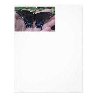 Black Swallowtail Butterfly #1-letterhead Letterhead