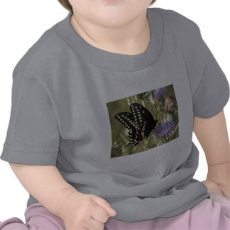 Black Swallowtail Butterfly Baby T-Shirt