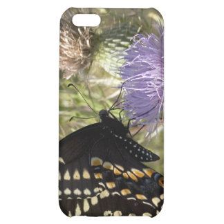 Black Swallowtail Butterfly  iPhone 4 Case
