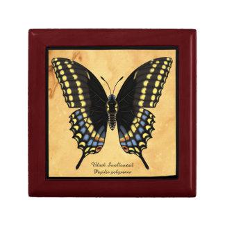 Black Swallowtail Butterfly Keepsake Box