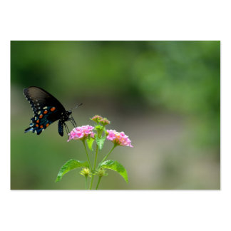 Black Swallowtail Butterfly Large Business Card
