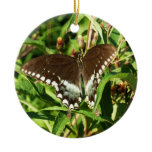 Black Swallowtail Butterfly Nature Photography Ceramic Ornament