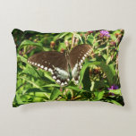 Black Swallowtail Butterfly Nature Photography Decorative Pillow