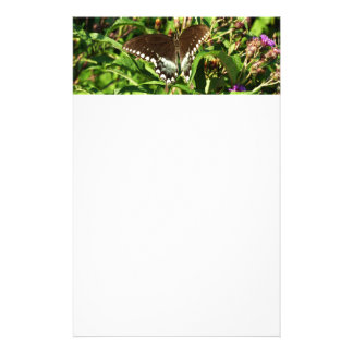 Black Swallowtail Butterfly Nature Photography Stationery