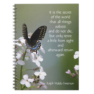 Black swallowtail butterfly notebook