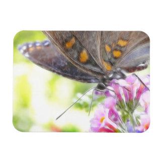 Black Swallowtail Butterfly on Buddleia Bush Rectangular Photo Magnet