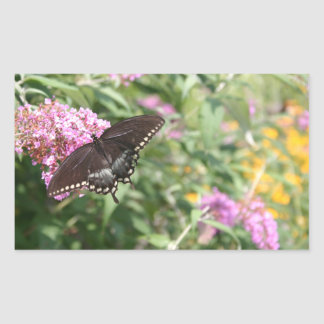 Black Swallowtail Butterfly on Butterfly Bush Rectangle Stickers