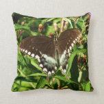 Black Swallowtail Butterfly Pillow