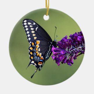 Black swallowtail butterfly profile ceramic ornament