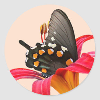 Black Swallowtail Butterfly, Red Lily Stickers