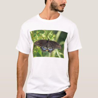 Black Swallowtail Butterfly T-Shirt