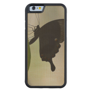 Black Swallowtail Carved Maple iPhone 6 Bumper Case