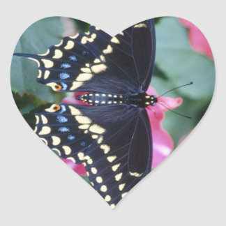 Black Swallowtail Heart Sticker