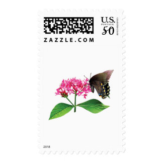 Black Swallowtail on Pink Lantana Postage