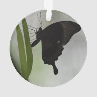 Black Swallowtail Ornament