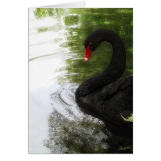 Black Swan 1 Pond Ripples Card