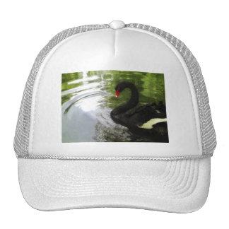 Black Swan 1 Pond Ripples Trucker Hat