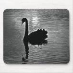 Black Swan - Australian Native Animal Mouse Pad