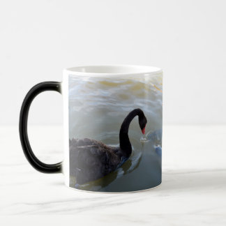 Black Swan Being Attacked By Giant Fish, Magic Mug