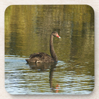 Black Swan Beverage Coaster