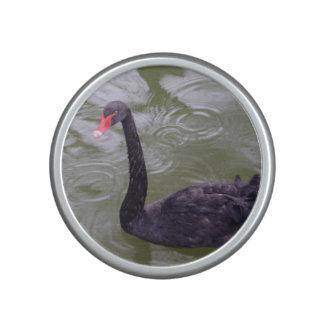 Black Swan Bumpster Speaker